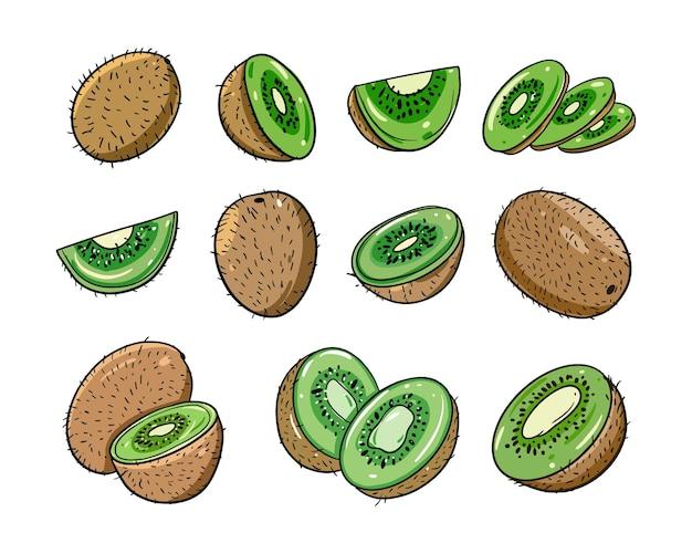 Unterschiedliches kiwi-set. flacher cartoon-stil.