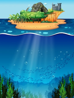 Unterwasser und insel
