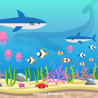 Unterwasserhintergrund mit verschiedenen meeresarten