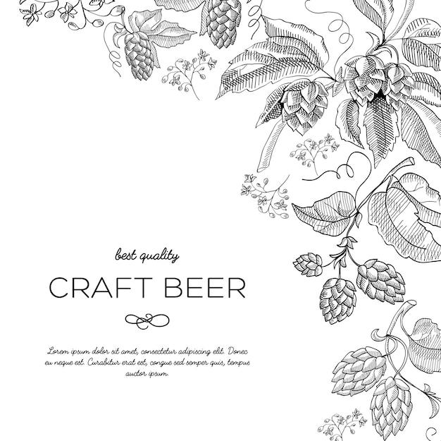 Ursprüngliche eckrahmenverzierungskritzeleien mit hopfenbeeren und luxusstielen nahe der inschrift, dass craft beer handgezeichnete gekritzelvektorillustration bester qualität hat