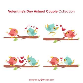 Valentine vogelpaar sammlung