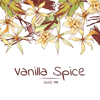 Vanille-gewürz-flyer für werbeagentur