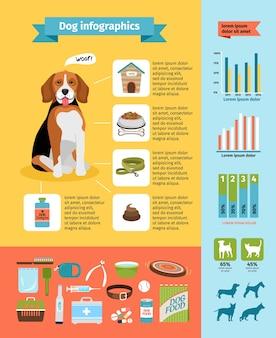 Vecto hundeinfografiken, hundefutter und zwinger, tierarzt und pflege, hundehalsband und hundeausstellungen