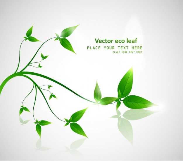 Vector eco blatt