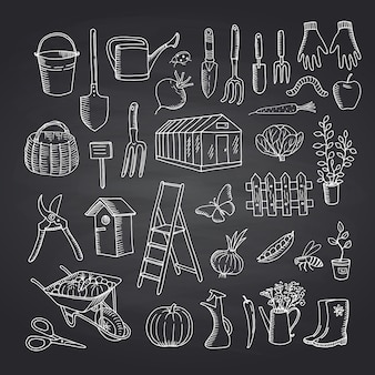 Vector gartenarbeitgekritzelikonen auf schwarzer tafelillustration