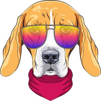 Vector hipster seriöser hund beagle rasse in roter krawatte und trendigen zweifarbigen brille