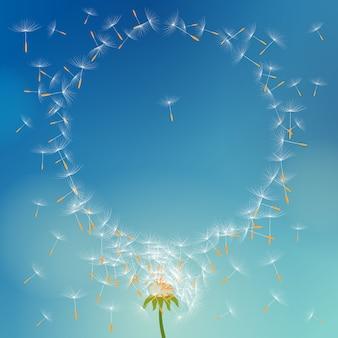 Vector löwenzahn mit den samen, die weg mit dem wind fliegen, der runden rahmen bildet