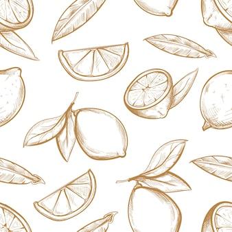 Vector nahtloses muster mit hand gezeichneten zitronen mit niederlassung, zitronenblüte, zitrusfruchtscheiben und blättern.