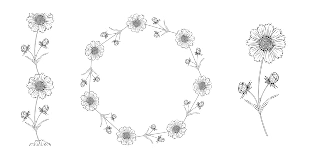 Vector schwarzweiss-konturnblumenanordnung mit kamillenblumen