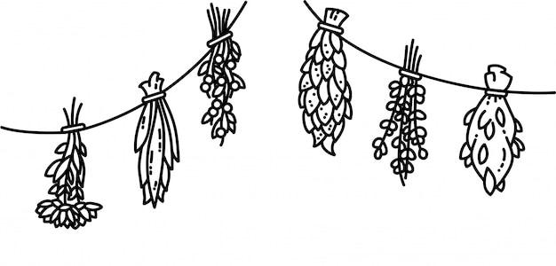Vektor-artillustrationen der getrockneten kräuter flache