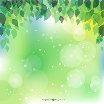 Vektor-bild frühlingsblätter