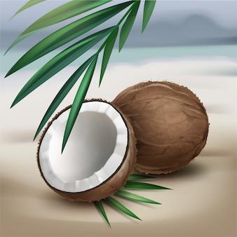 Vektor braune ganze und halbe kokosnuss mit grünen palmblättern lokalisiert auf unscharfem küstenhintergrund