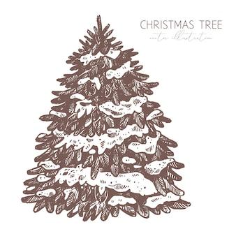 Vektor flauschige fichte unter dem schnee. gravierte radierungsillustration des weihnachtsbaumes. hand gezeichnete skizze