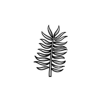 Vektor handgezeichnete blätter der palme umriss doodle symbol. blätter der palmenskizzenillustration für druck, netz, handy und infografiken lokalisiert auf weißem hintergrund.