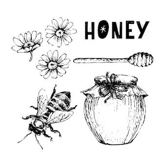Vektor-honig-set. vintage handgezeichnete abbildung. gravierte bio-lebensmittel