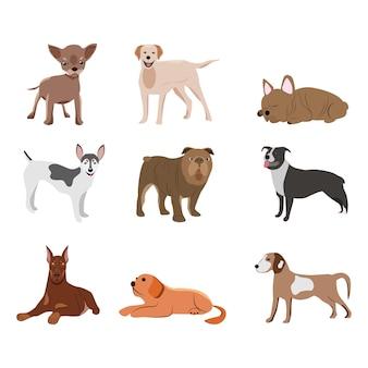 Vektor-illustration einer reihe von hunderassen