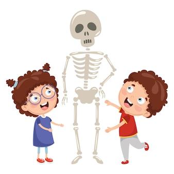 Vektor-Illustration von den Kindern, die Biologie-Lektion mit menschlichem Skeleton Modell haben