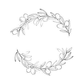 Vektor-kranz mit oliven und blättern schöner handgezeichneter flora-kranz mit oliven