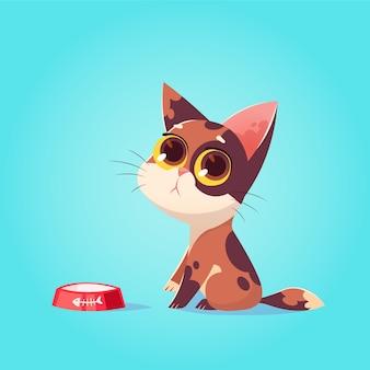 Vektor niedliche katze charakter illustration. cartoon-stil. schade, hungriges kätzchen mit schüssel. haustier.