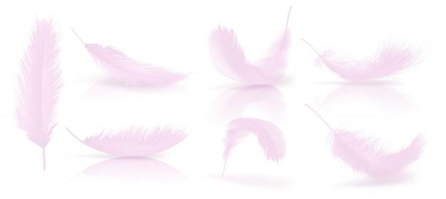 Vektor realistische 3d-set von rosa vogelfedern