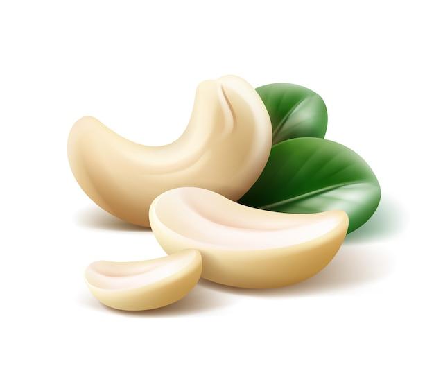 Vektor realistische cashewnüsse mit blättern schließen oben seitenansicht lokalisiert auf weißem hintergrund