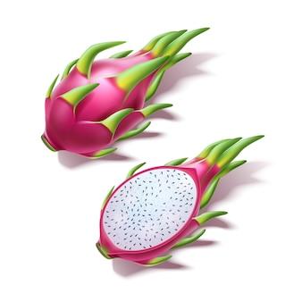 Vektor realistische pitahaya drachenfrucht pitaya 3d