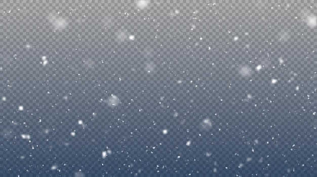 Vektor schneefall isoliert winter hintergrund schnee overlay illustration schneeflocken und eis