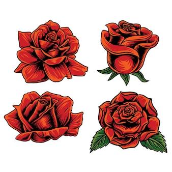 Vektor-set rose im untergrund weiß