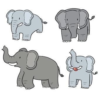 Vektor-set von elefanten Premium Vektoren