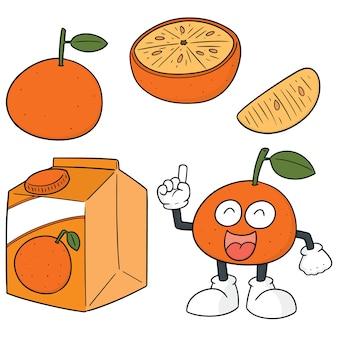 Vektor-set von orangen