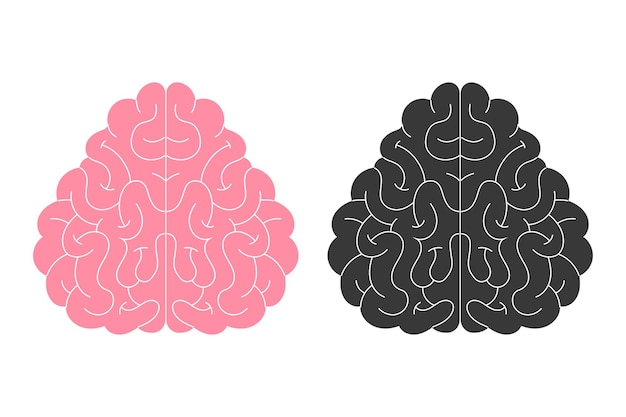 Vektor-silhouette des menschlichen gehirns, symbol. neuropsychologie, medizin, kreativität, gedächtnisprobleme, demenz. flache illustration isoliert auf weißem hintergrund