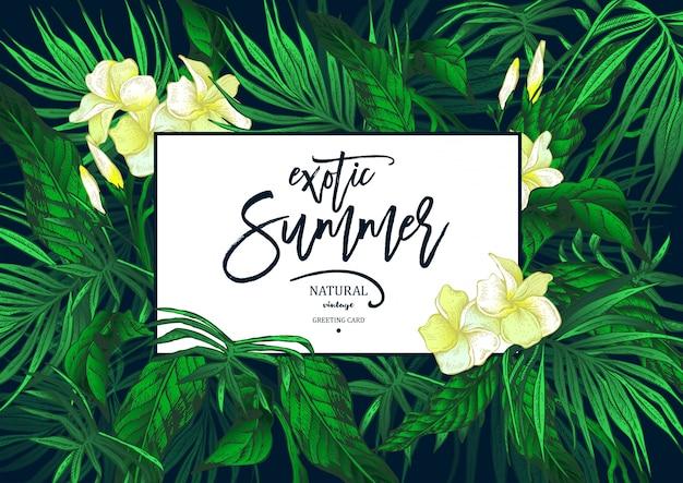 Vektor-sommer lässt weinlese-exotische gruß-karte