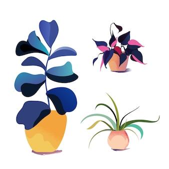Vektor topf zimmerpflanzensammlung. moderne innenelemente. set verschiedener zimmerpflanzen.