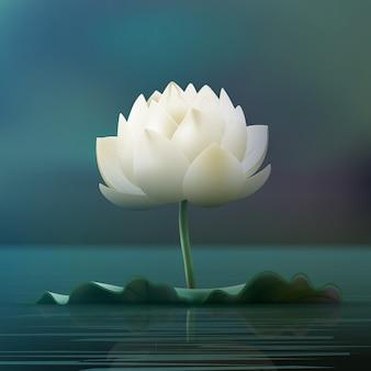 Vektor weißer lotusblumenblock im teich lokalisiert auf unschärfehintergrund