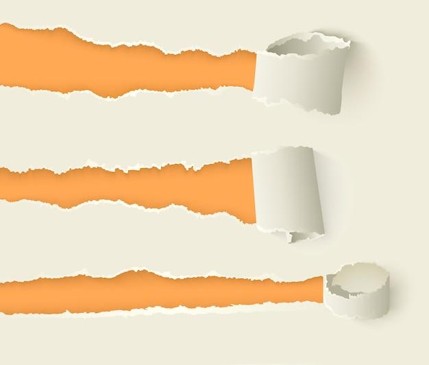Vektor zerrissenes gerolltes papier mit den zerrissenen rändern eingestellt