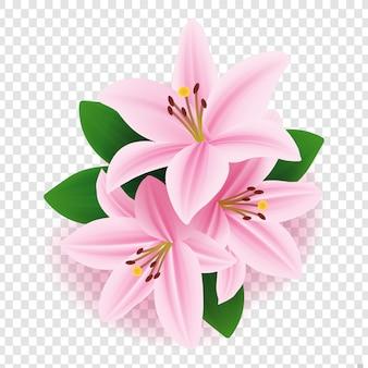 Vektorblumenmuster: rosa lilienblume