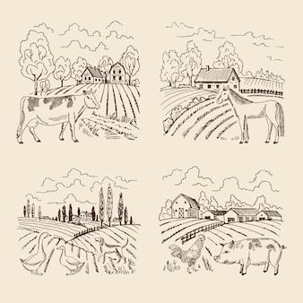 Vektordorf und großes feld. landschaft mit landwirtschaft und tieren. set für illustrationen in retro