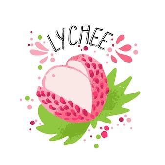 Vektorhandabgehobener betrag färbte rosa litschiillustration mit massen- und grünblättern.