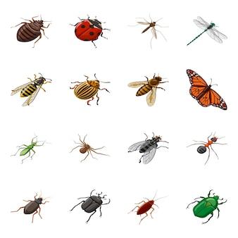 Vektorillustration der insekten- und fliegenikone. sammlung des insekten- und entomologiesatzes