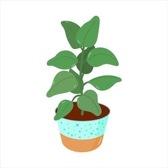Vektorillustration mit eingemachten zimmerpflanzen in einem flachen stil