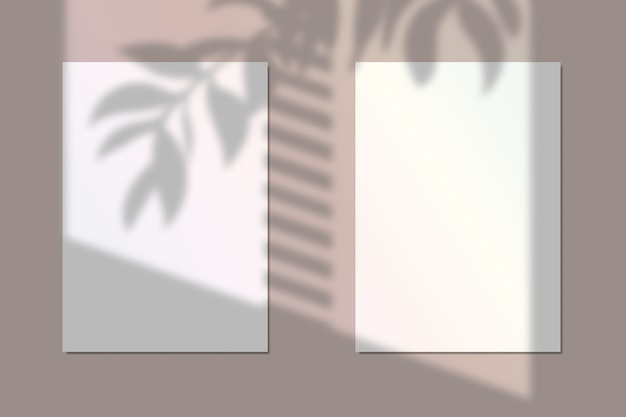 Vektorillustration von zwei papiermodellen mit realistischem blumenschattenüberlagerungseffekt