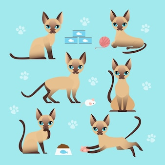 Vektorillustrationssatz der niedlichen katze in verschiedenen posen. essen, schlafen, sitzen und kätzchen spielen