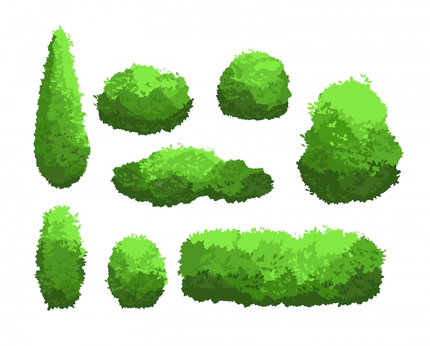 Vektorillustrationssatz von gartengrünbüschen und dekorativen bäumen. strauch- und buschkollektion im cartoon-stil