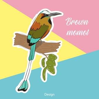 Vektorillustrationsschablone für eine postkarte, eine visitenkarte oder ein werbebanner. abbildung auf lager. tropischer vogelaufkleber auf einem hellen hintergrund. brauner momot.
