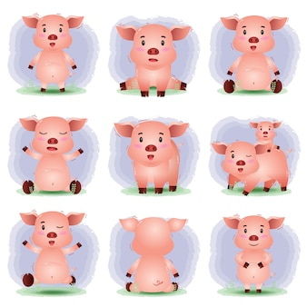 Vektorkarikatursatz des niedlichen schweins