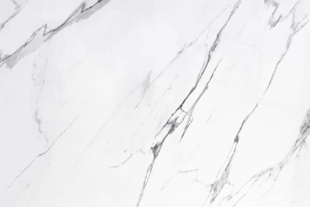 Vektormarmorbeschaffenheits-designhintergrundschwarzweiss-marmoroberfläche moderne luxusvektorillustration