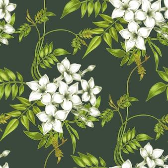 Vektornahtloses blumenmuster mit jasminblumen.