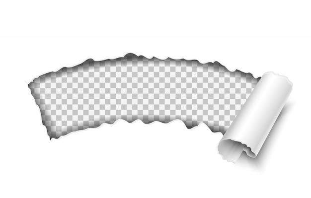 Vektorpapier transparent zerrissen