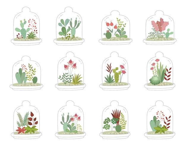 Vektorpostkarte mit süßen zimmerpflanzen unter glas gartenarbeit unter der kuppel