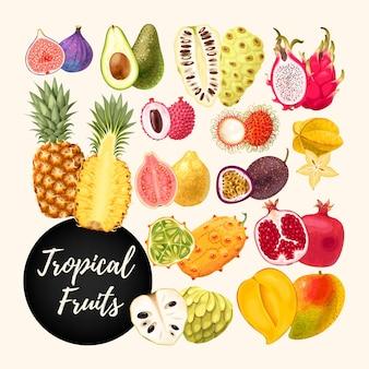 Vektorsammlung von tropischen früchten Premium Vektoren